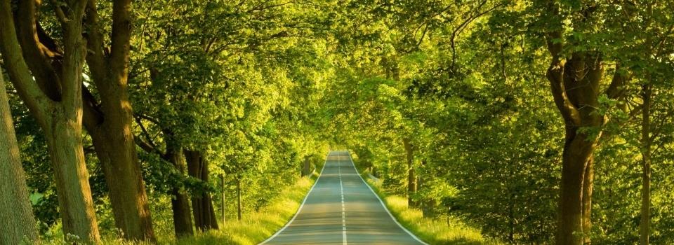 Carretera-735-e1377640123583